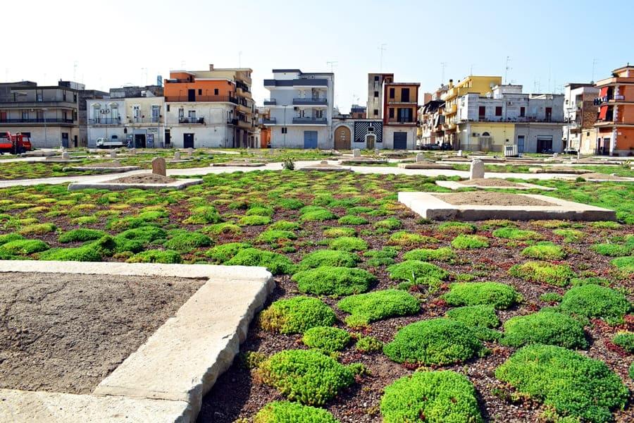 DSC_0068 Cerignola e dintorni: itinerario nei luoghi di Giuseppe Di Vittorio