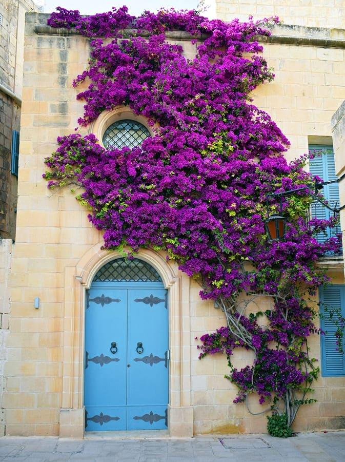 DSC_0617 Mdina e Rabat: esplorando il centro di Malta