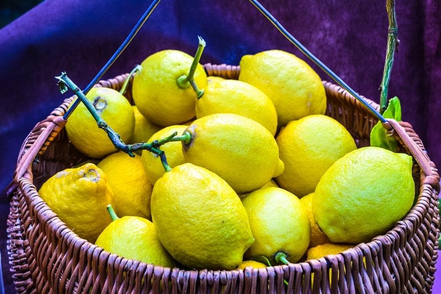 san-valentino-vico-del-gargano-limoni-femminello San Valentino a Vico del Gargano: la festa dell'amore e delle arance