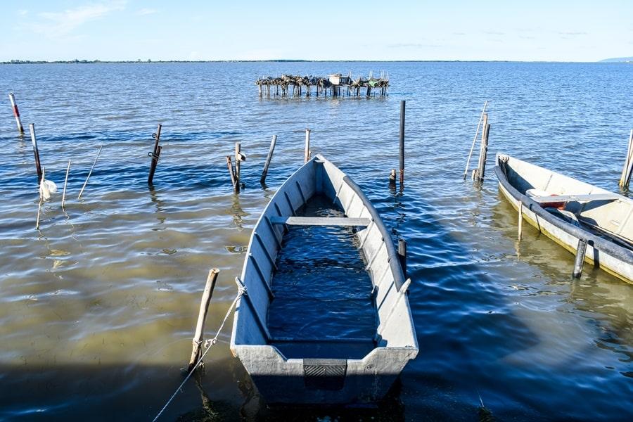 lago-di-lesina-01 Gargano: cosa vedere sul Lago di Lesina e dintorni