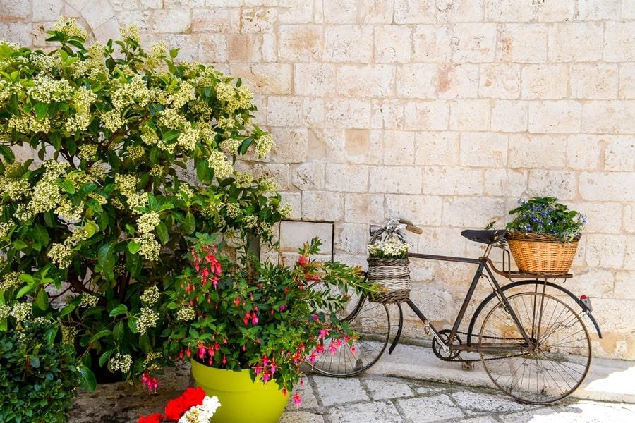 cosa-vedere-a-conversano-centro-storico-01 Posti da visitare in Puglia: Conversano e dintorni