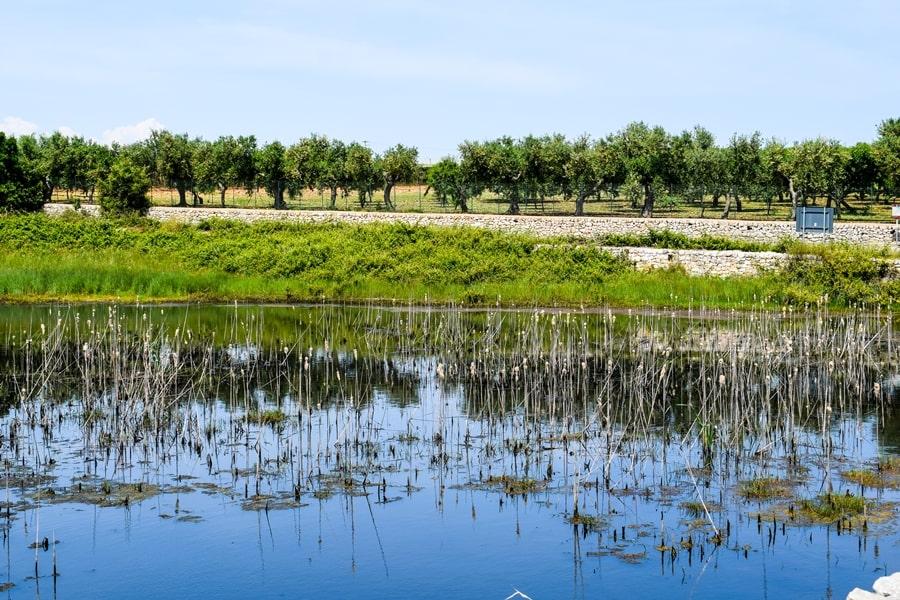 laghi-di-conversano-escursione Posti da visitare in Puglia: Conversano e dintorni