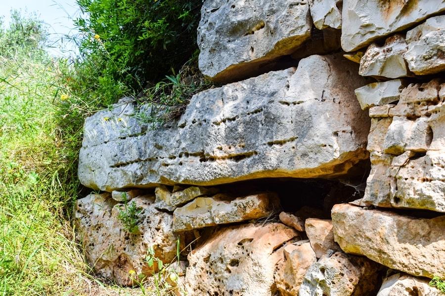 trekking-bosco-di-castiglione-conversano-torre-castiglione-05 Posti da visitare in Puglia: Conversano e dintorni