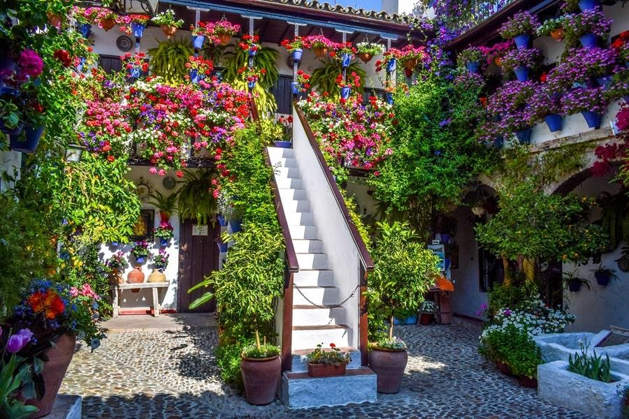cosa-vedere-a-cordoba-un-giorno-patios-fioriti-san-basilio-andalusia-spagna-06 Cordoba: cosa vedere in 24 ore, dove mangiare e dormire