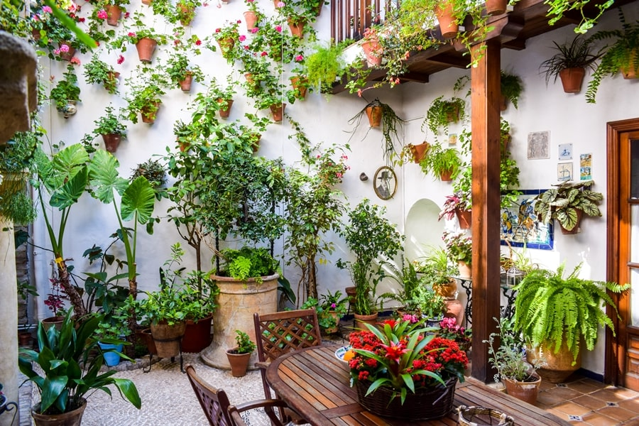 cosa-vedere-a-cordoba-un-giorno-patios-fioriti-san-basilio-andalusia-spagna-10 Cordoba: cosa vedere in 24 ore, dove mangiare e dormire