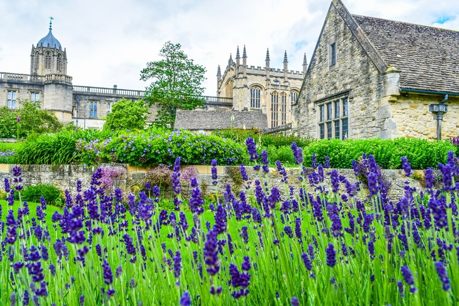 cosa-vedere-a-oxford-christ-church-college-inghilterra-regno-unito-10 Cosa vedere a Oxford, itinerario di un giorno da Londra