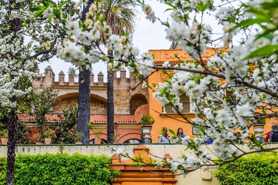 real-alcazar-di-siviglia-cosa-vedere-biglietti-orari-28 Real Alcázar di Siviglia: cosa vedere, biglietti e orari