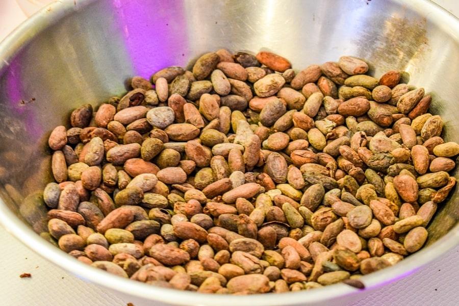fave-cacao-modica Chocomodica: la festa del cioccolato di Modica
