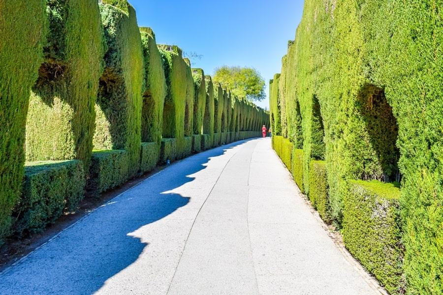alhambra-granada-generalife-giardini-02 L'Alhambra di Granada: tutte le informazioni sulla visita e i biglietti