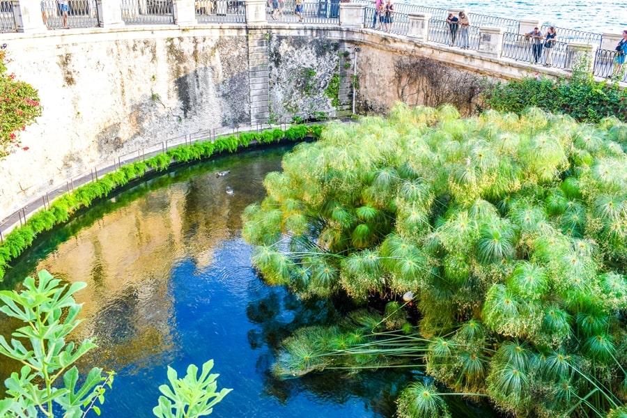 cosa-vedere-a-siracusa-sicilia-fonte-aretusa-01 Cosa vedere a Siracusa: tutti i luoghi da non perdere