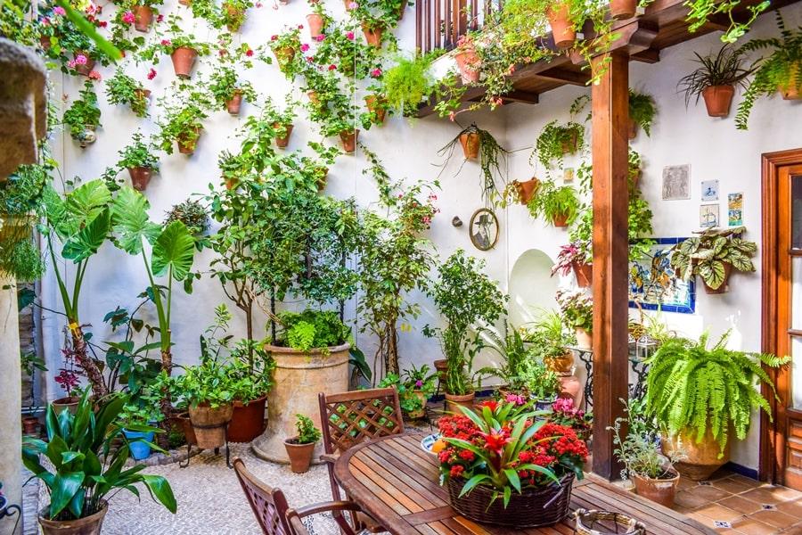 cortili-cordoba-martinderoa9-01 Cortili di Cordoba: informazioni per visitare i patios fioriti più belli