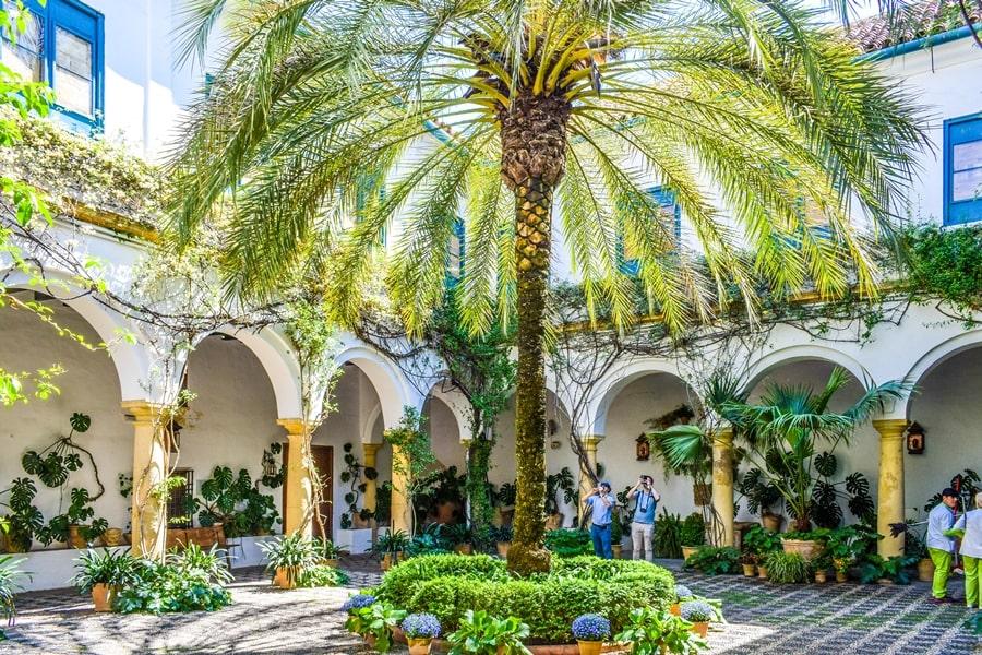 cortili-cordoba-palacio-viana-01 Cortili di Cordoba: informazioni per visitare i patios fioriti più belli