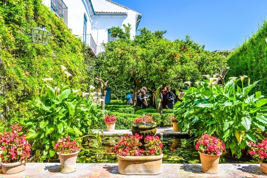 cortili-cordoba-palacio-viana-02 Cortili di Cordoba: informazioni per visitare i patios fioriti più belli