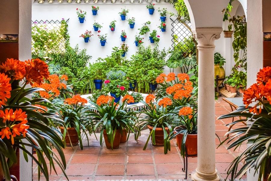 cortili-cordoba-san-basilio-01 Cortili di Cordoba: informazioni per visitare i patios fioriti più belli