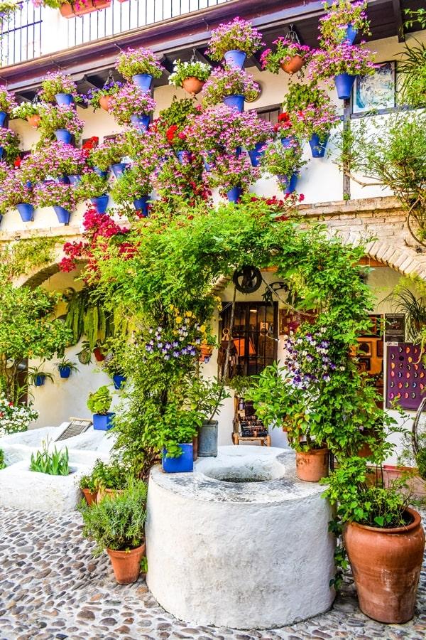 cortili-cordoba-sanbasilio44-01 Cortili di Cordoba: informazioni per visitare i patios fioriti più belli