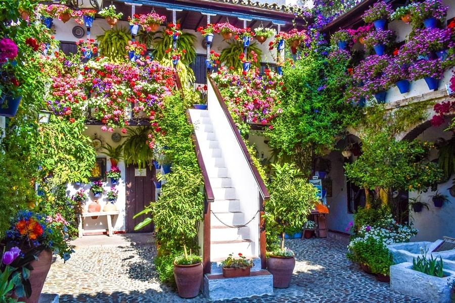 cortili-cordoba-sanbasilio44-02 Cortili di Cordoba: informazioni per visitare i patios fioriti più belli