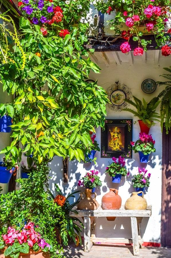 cortili-cordoba-sanbasilio44-05 Cortili di Cordoba: informazioni per visitare i patios fioriti più belli