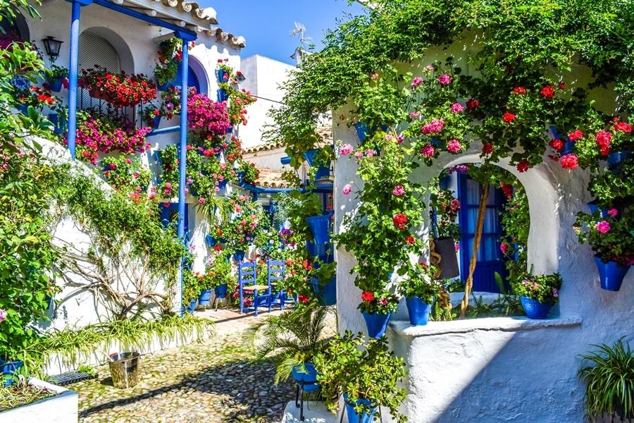 cortili-cordoba-trueque4-01 Cortili di Cordoba: informazioni per visitare i patios fioriti più belli