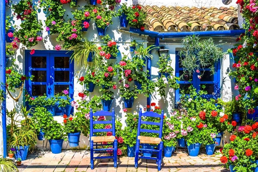 cortili-cordoba-trueque4-02 Cortili di Cordoba: informazioni per visitare i patios fioriti più belli
