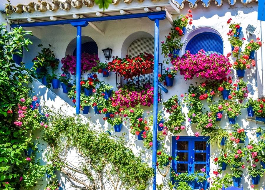 cortili-cordoba-trueque4-03 Cortili di Cordoba: informazioni per visitare i patios fioriti più belli