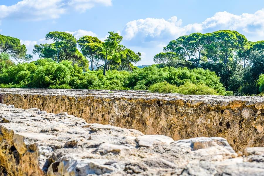 castello-di-donnafugata-20 Castello di Donnafugata: storia, come arrivare e orari